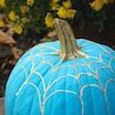 The Teal Pumpkin Project: Allergy Safe & Real Food Approved!