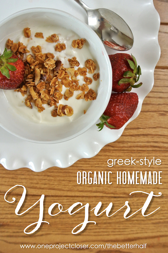 Organic-Homemade-Yogurt-Recipe-One-Project-Closer