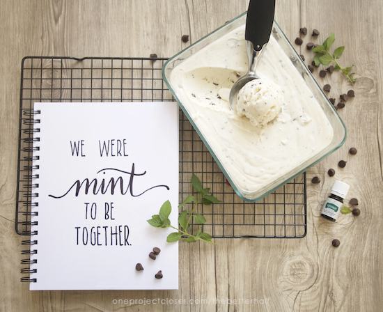 No Churn Mint Chocolate Chip Ice CreamMintChip+Printable from One Project Closer