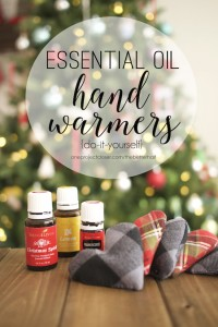 DIY-hand-warmer