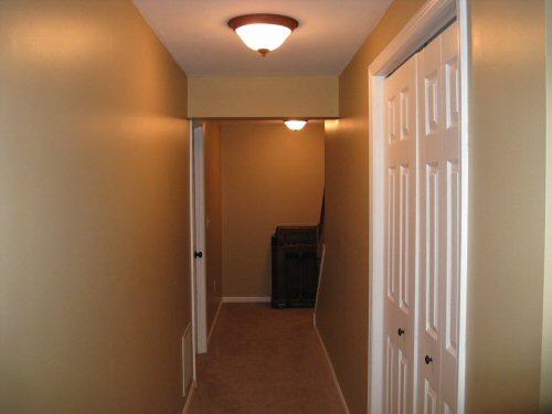 basement hallway carpet