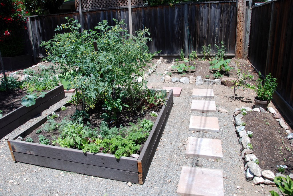 New Gardening Beds