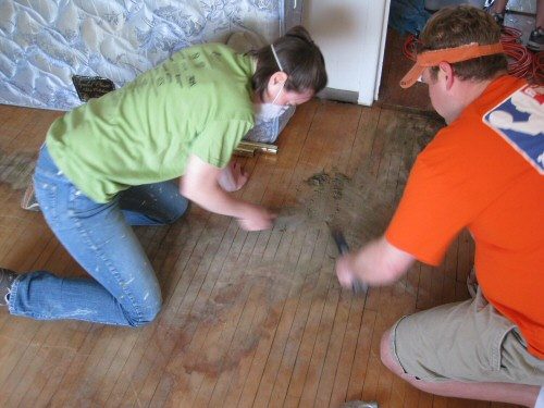 scraping-padding-from-pet-soiled-areas-on-hardwood