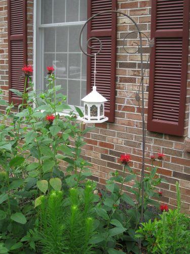 Garden Hook Bird Feeder