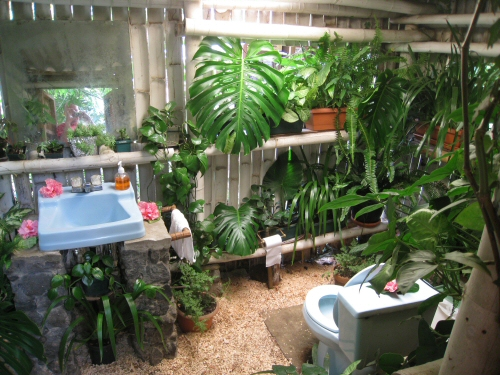 A Real Outdoor Tropical Bathroom In Guatemala One
