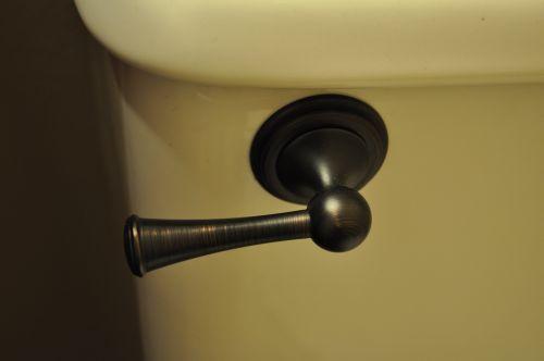Brizo Toilet Lever
