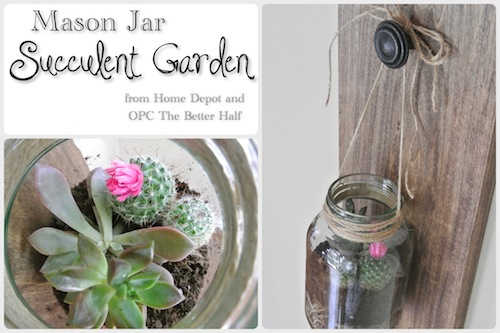Mason-Jar-Succulent-Garden - OPC The Better Half