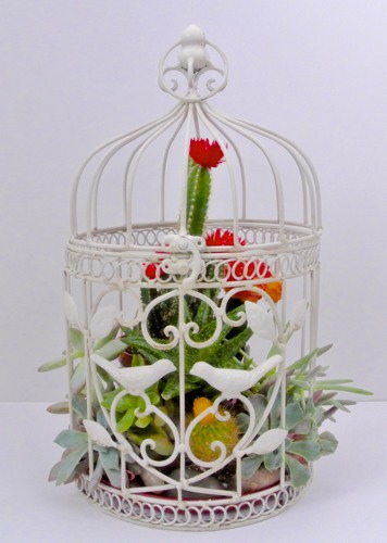 Birdcage Planter - OPC The Better Half