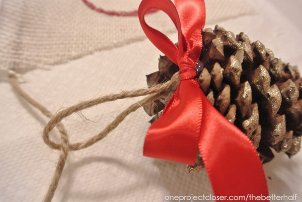 Rope to Pine Cone