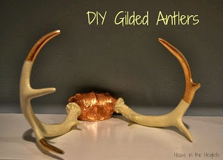 Gilded Antlers