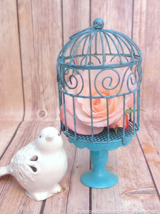 Painted birdcage