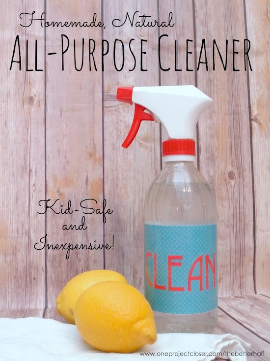 Homemade All Purpose Cleaner - One Project Closer