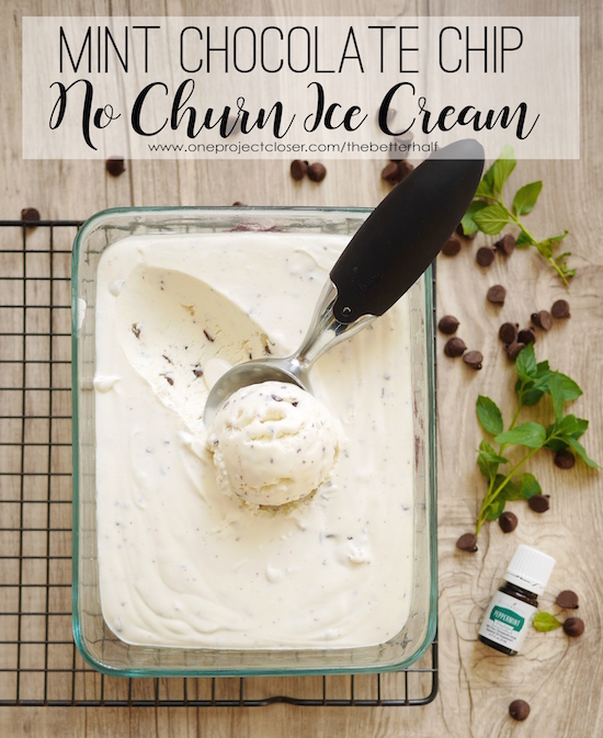 No Churn Mint Chocolate Chip Ice Cream from One Project Closer